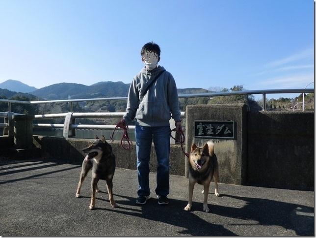 20190310ダム散歩03-13