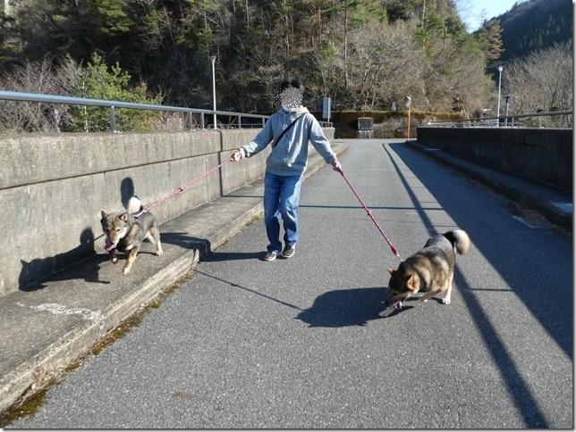 20190310ダム散歩03-19