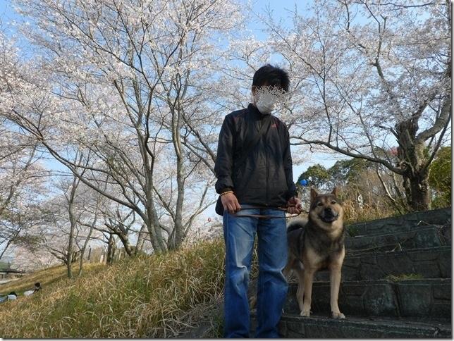 20190407桜散歩01-08