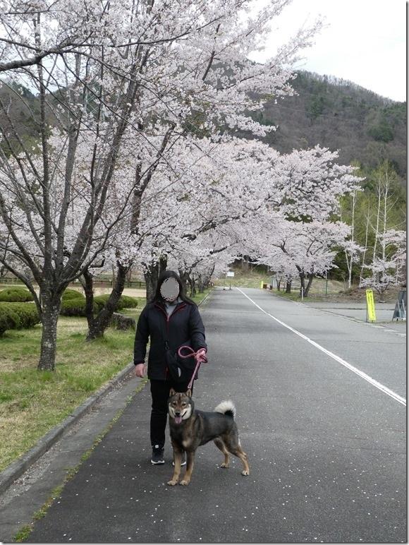 201904平成最後の09-王滝村-06