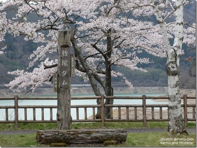 201904平成最後の09-王滝村-08