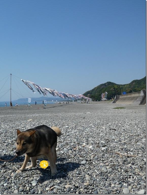 20190504熊野01-05