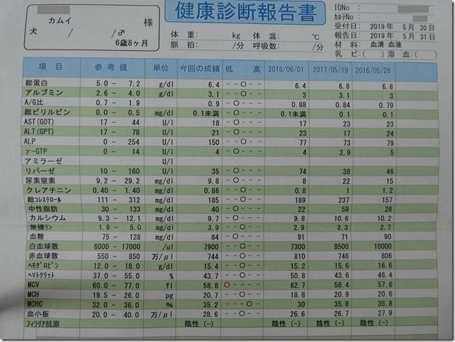 20190618カム血液検査結果-03