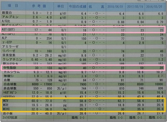 20190618カム血液検査結果-04