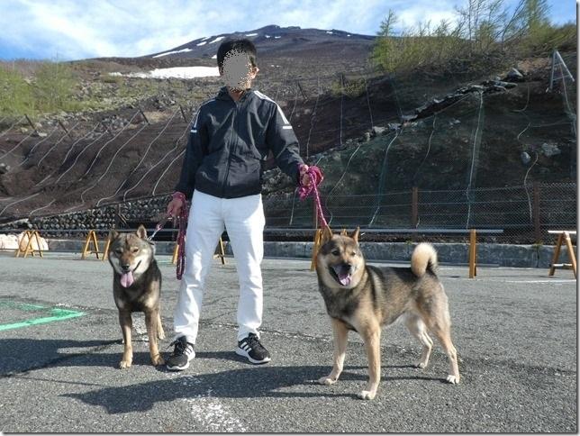 201906富士山の旅02-28
