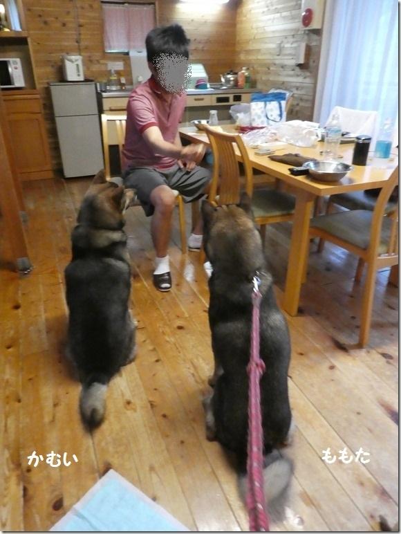 201906富士山の旅09-02