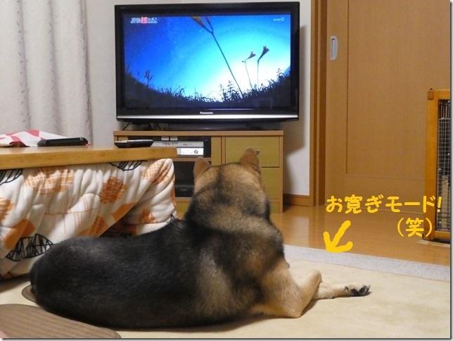 20190724TVっ子カムイ-04