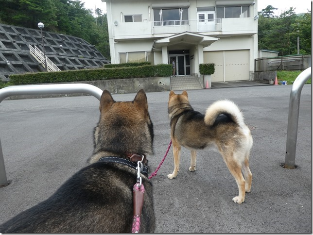 20190825ダム散歩03-02