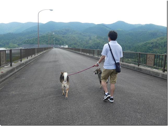20190825ダム散歩03-13