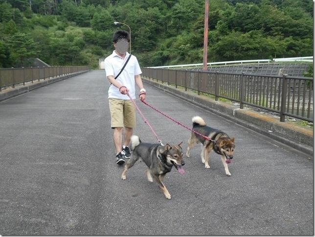 20190825ダム散歩03-21