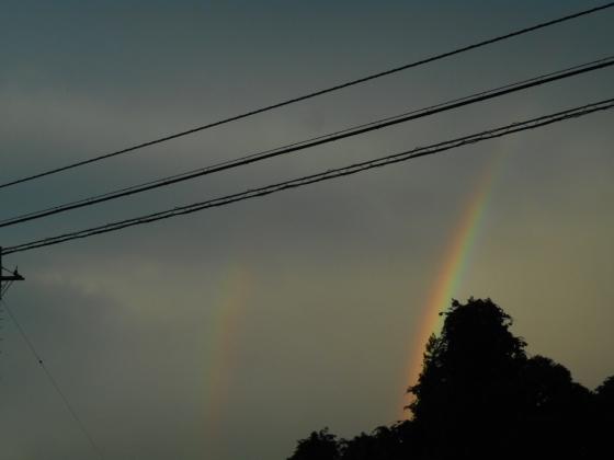 190808 虹