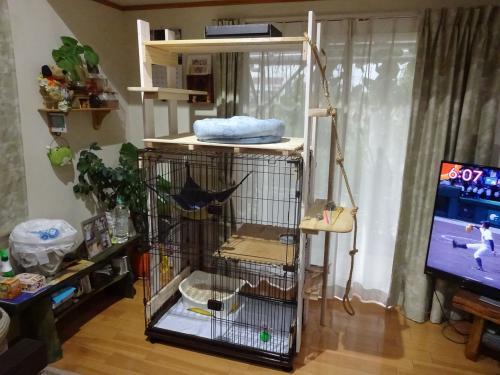 クロスケ邸 + ネコタワー