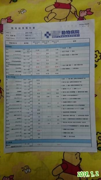 07hBTCA2FdL39TQ1546484247_1546484349.jpg