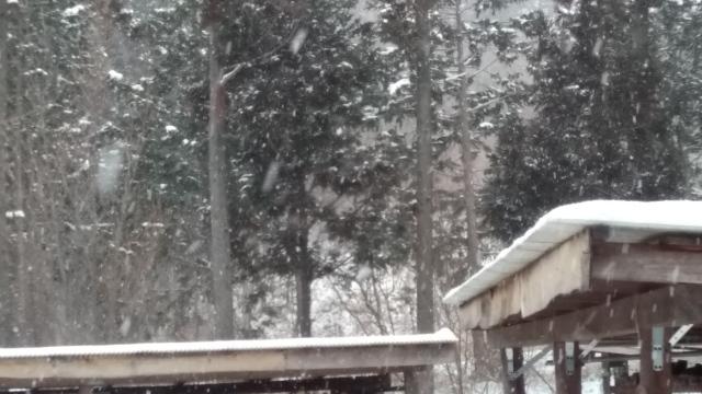 27日も雪0127