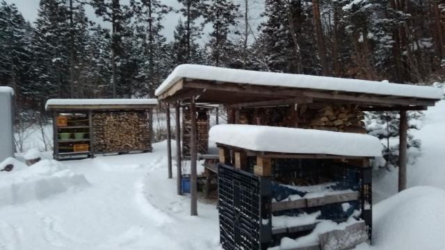 外出後積雪20cm0211