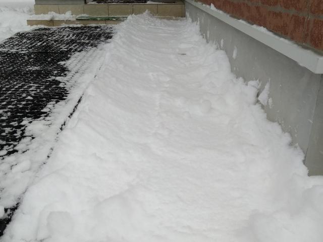 雪の受け皿0216
