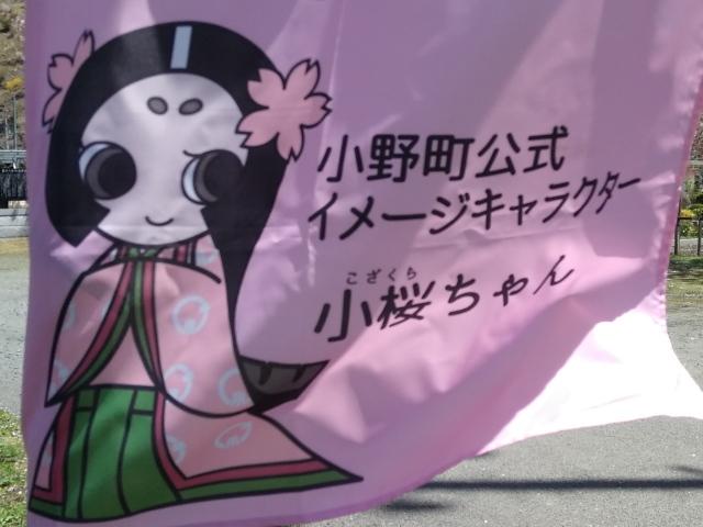 小桜ちゃん0429