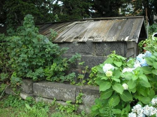 東区 ナナメ通り Tさん宅 ムロ 2006年
