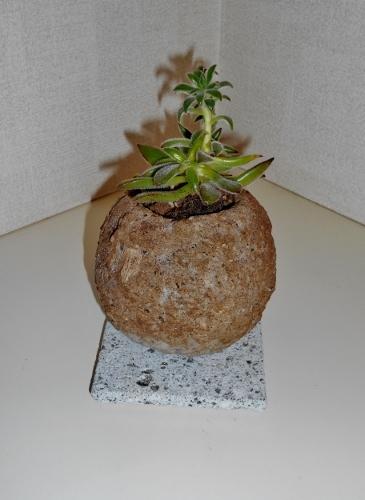 札幌軟石の小鉢 大谷石のコースター