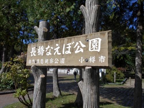 小樽 長橋なえぼ公園 看板