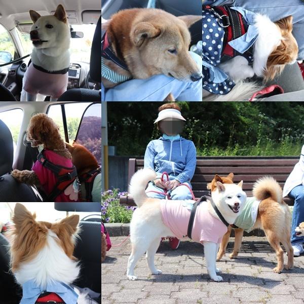 岡山向かってる途中3