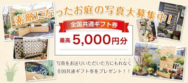 sekou-gift2.jpg