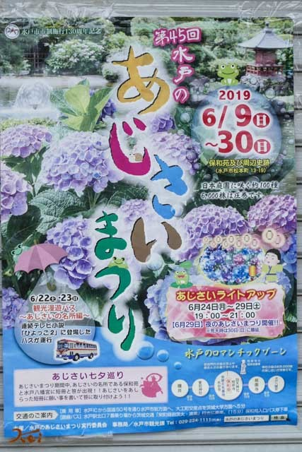 20190624紫陽花_保和苑01