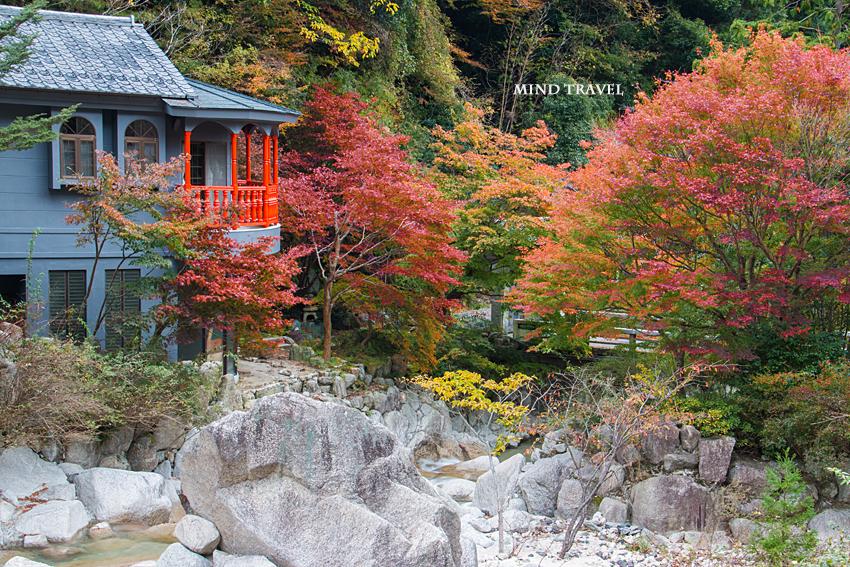 湯の山温泉 紅葉2