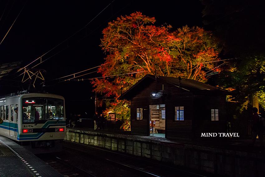 二ノ瀬駅 紅葉 ライトアップ