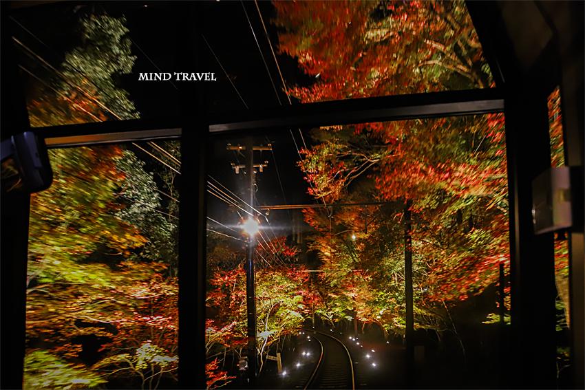 叡山電鉄 きららより紅葉のトンネルを写す