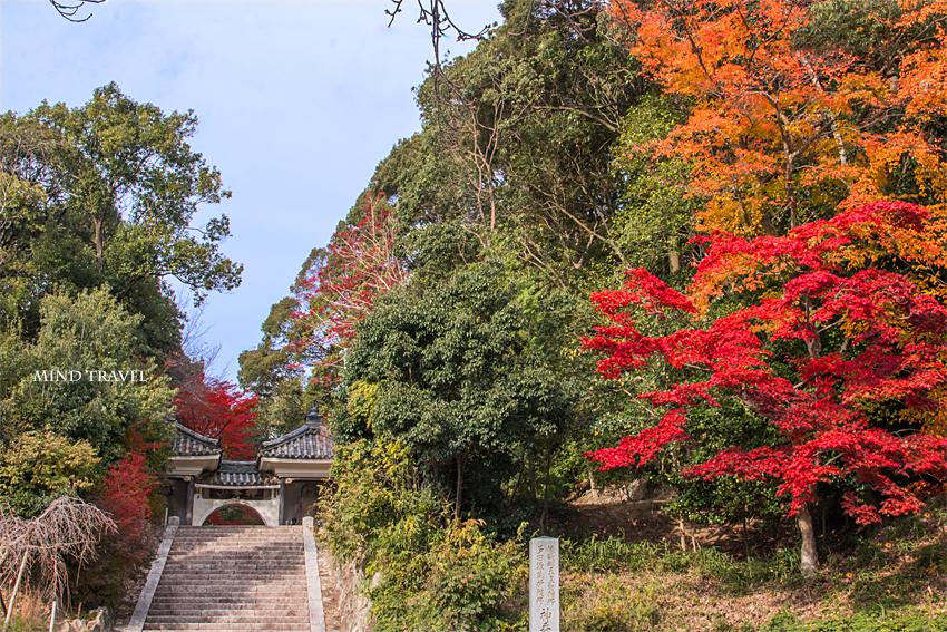 満願寺 山門3