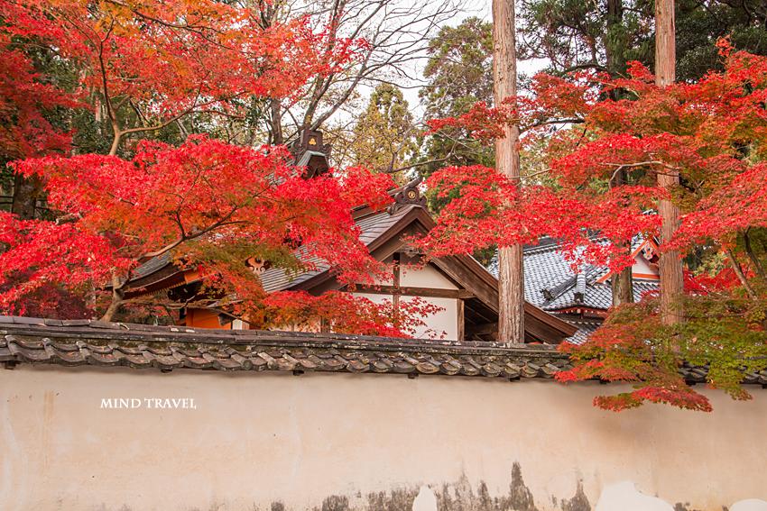多田神社 田尻稲荷神社