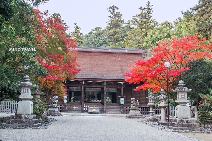 多田神社 拝殿2