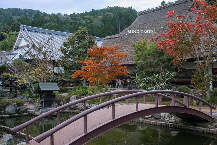 禅定寺 池