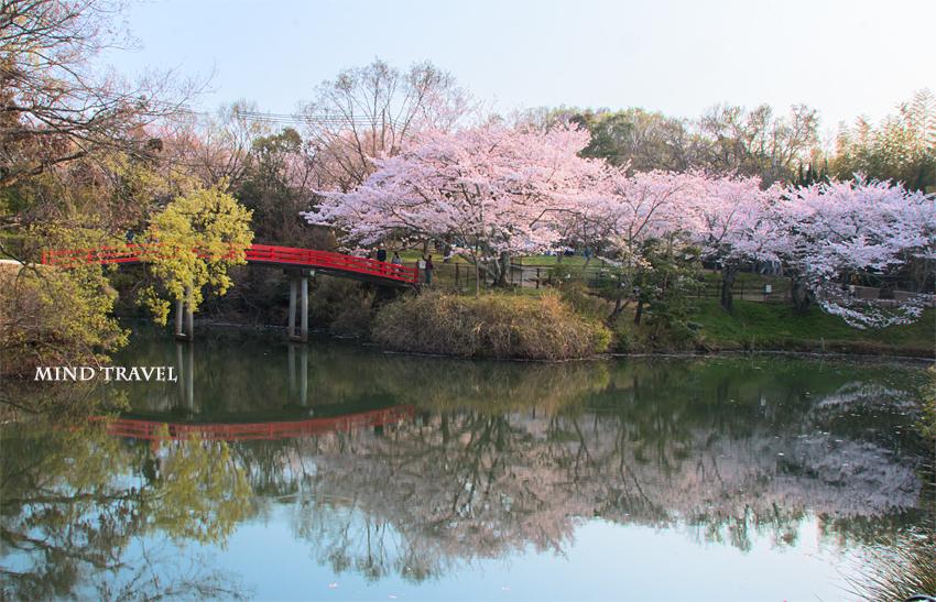 水間寺 愛染橋