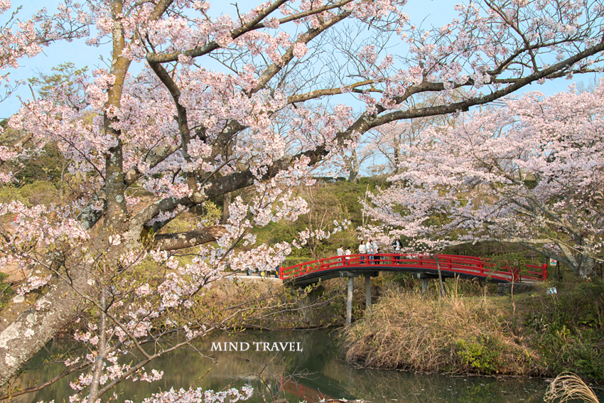 水間寺 愛染橋2