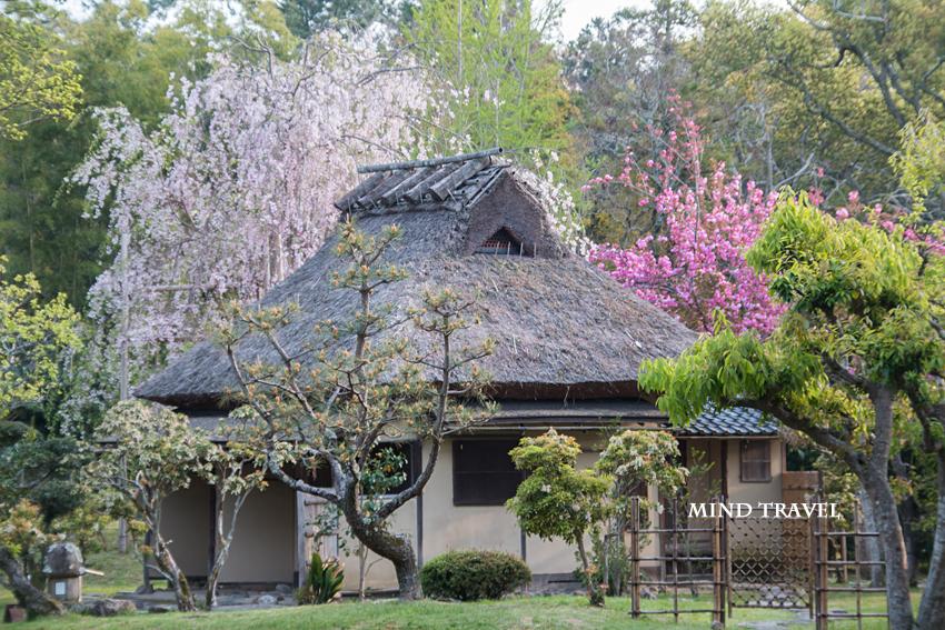奈良国立博物館 庭園3