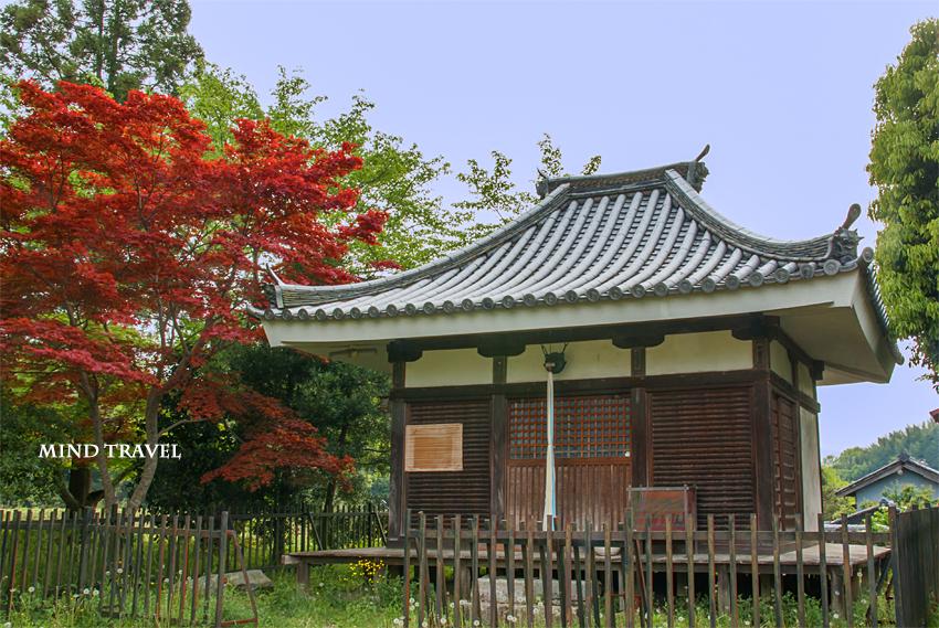 山田寺 赤い楓