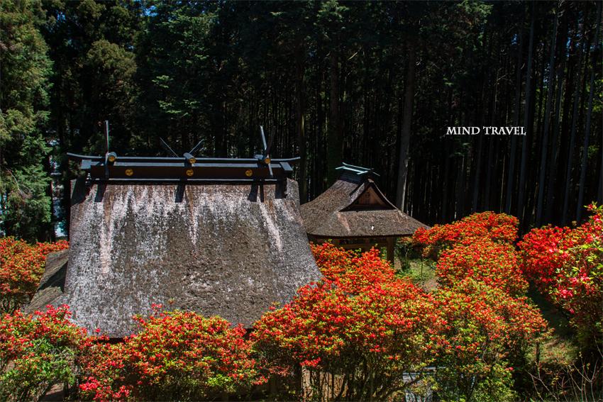 一ノ宮神社2