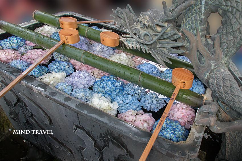 楊谷寺 手水