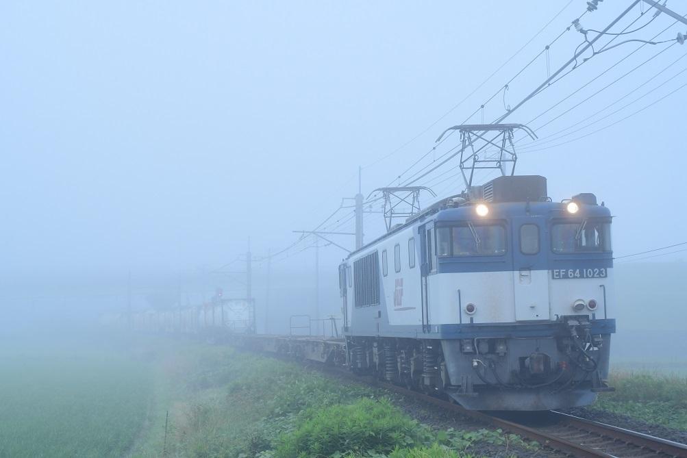 DSC_0020 - コピー