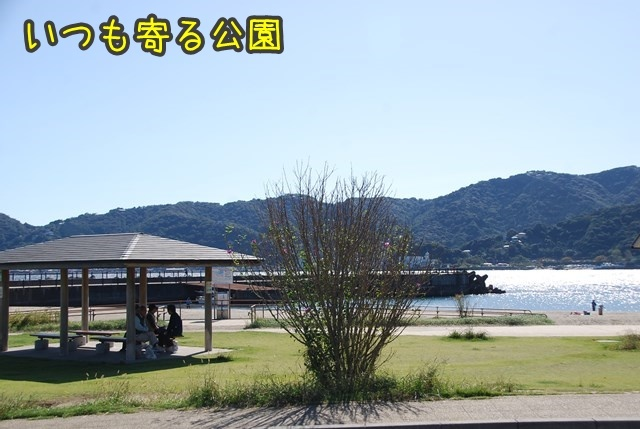 a-DSC_7356.jpg