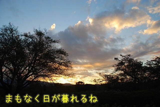a-DSC_7425.jpg