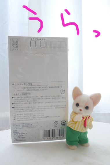 sP1210436.jpg