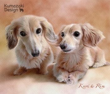 ペット肖像画 ペットの絵 ペット画 ペットロス 似顔絵 遺影 イラスト 犬 いぬ 小犬 子犬 色えんぴつ画 色鉛筆画