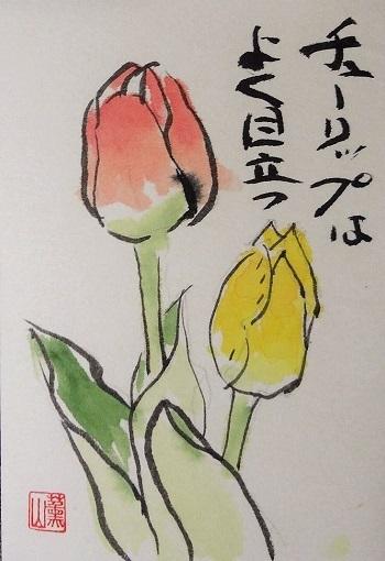 20110403田中sんチューリップ