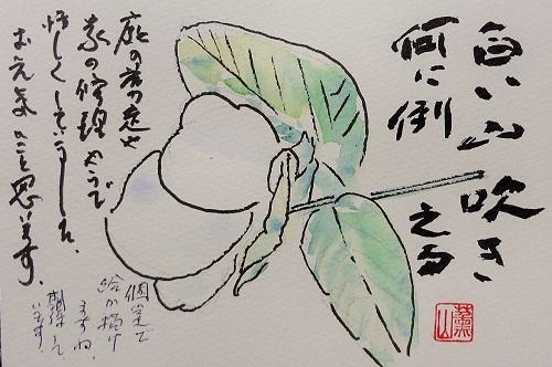 20110405田中さん白い花