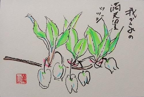 20110410田中さんどうだんつつじ