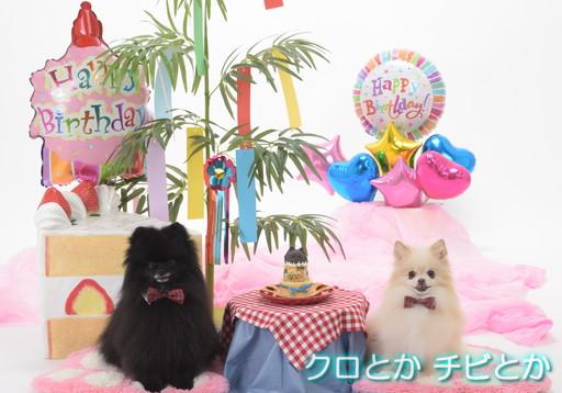 BIRTHDAY_001.jpg