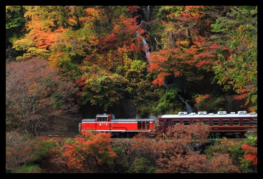 神戸ー小中滝撮影地181117
